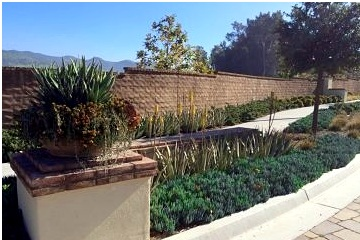 commercial landscape maintenance orange county, ca