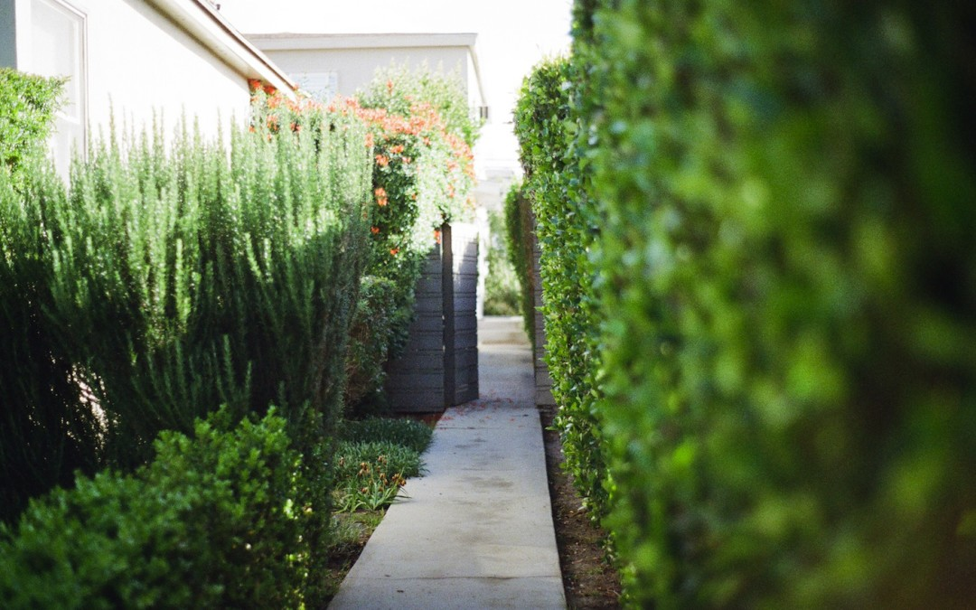- Finding Local Landscaping Companies Made Easy