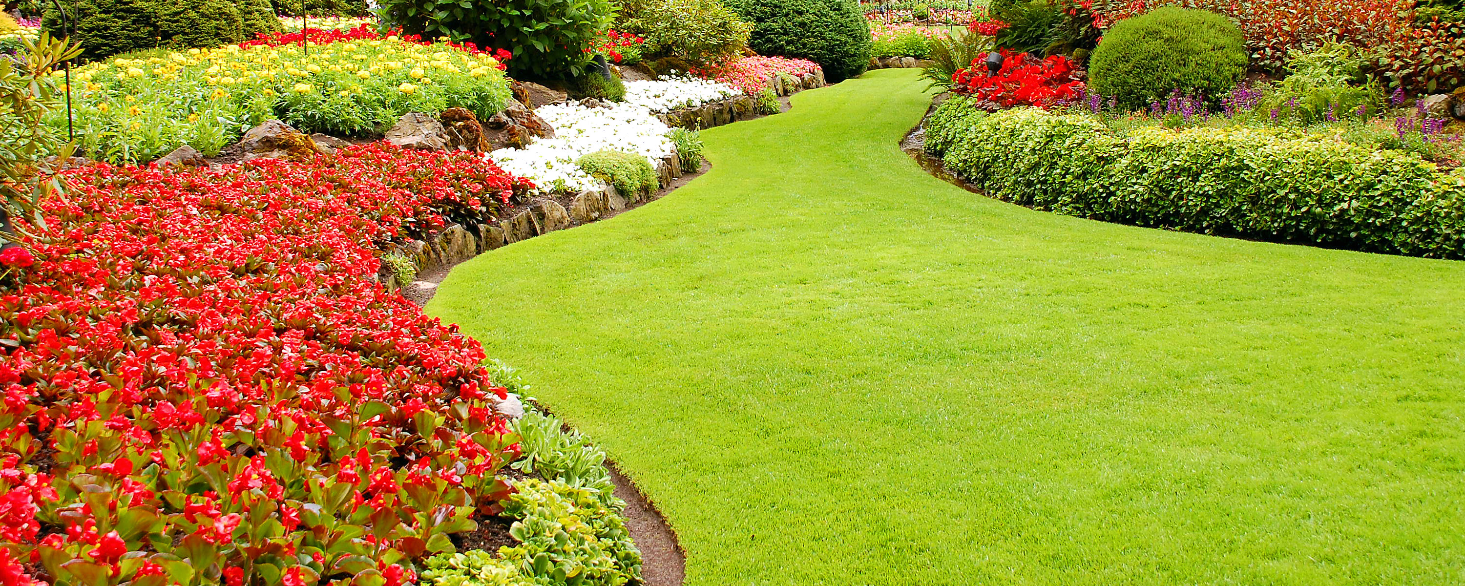 HOA Flowers and Grass | Western Landscape Maintenance Plus